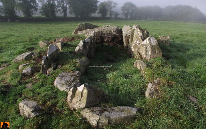 DRUMEAGUE WEDGE TOMB, COUNTY CAVAN