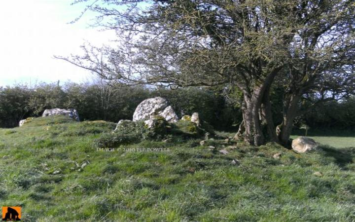 FUERTY WEDGE TOMB, COUNTY ROSCOMMON