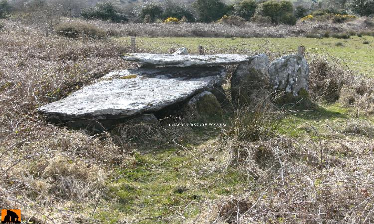 LY WEDGE TOMB, COUNTY CORK