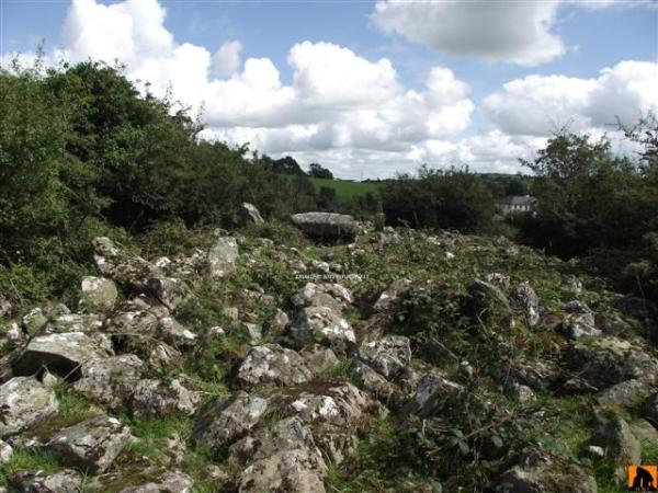 TIREDIGAN COURT TOMB, COUNTY MONAGHAN