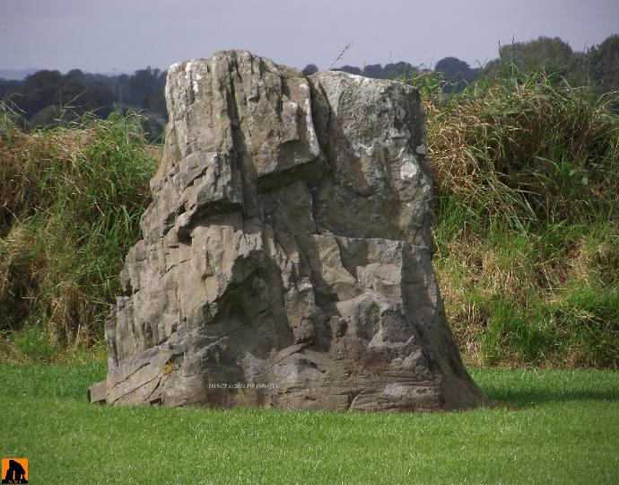 WHITERATH STANDING STONE, COUNTY LOUTH